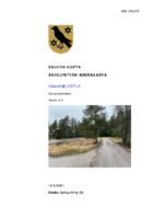 Selostus_Ankkuritien_AK_Luonnos_16.3.2021